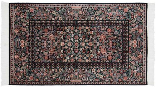 3×5 Aubusson Black Oriental Rug 026051