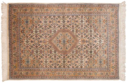 4×6 Bijar Ivory Oriental Rug 035773