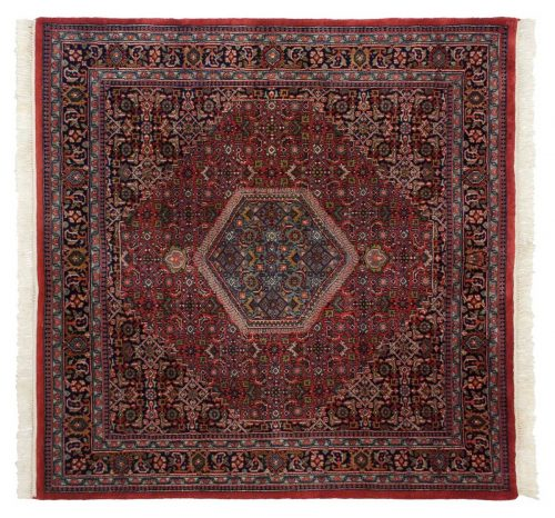 6×6 Bijar Red Oriental Square Rug 036078
