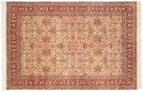 6×9 Agra Gold Oriental Rug 039173