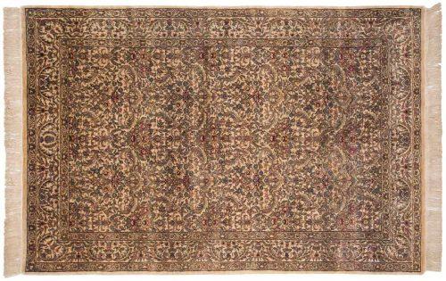6×9 Baktiari Beige Oriental Rug 032511