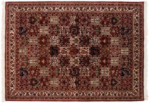 6×9 Baktiari Multi Color Oriental Rug 030060