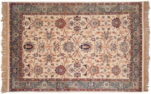 6×9 Sultanabad Ivory Oriental Rug 031480