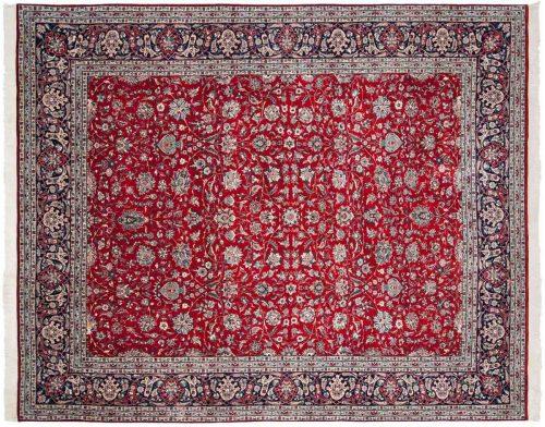 9×11 Persian Red Oriental Rug 039806