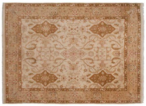 9×12 Amritsar Ivory Oriental Rug 022381